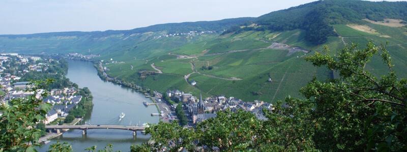 Burgblick-2